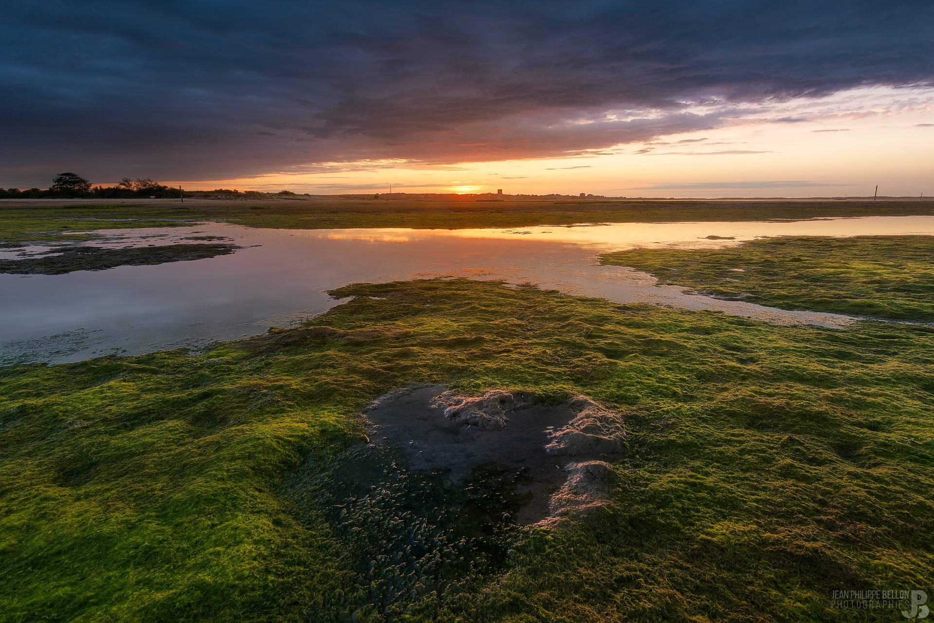 Coucher de soleil sur les algues de la plage de La Hume
