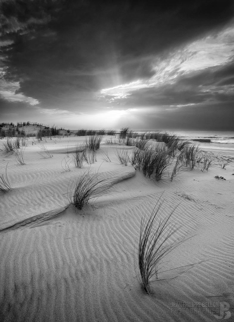 Coucher de soleil en noir et blanc de la plage du Wharf