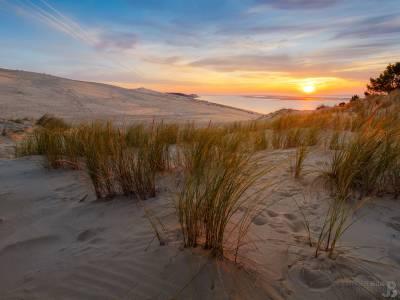 Photo : Coucher sur la Dune du Pilat