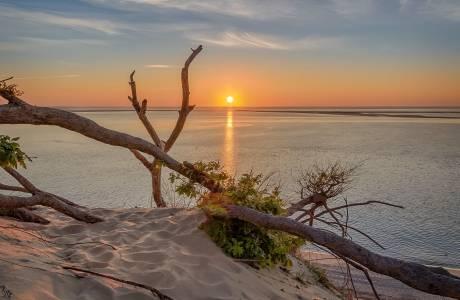 Photo de Dune du Pilat - La plage des robinsons
