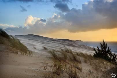 Photo de Dune du Pilat - La Dune dans la tourmente #2