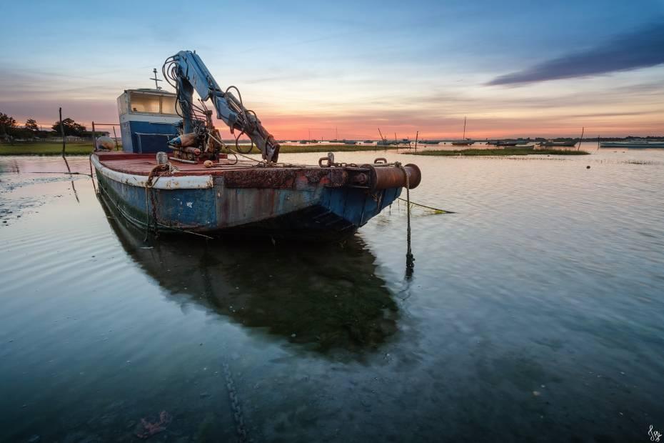 La plate, bateau typique des ostréiculteurs du Bassin